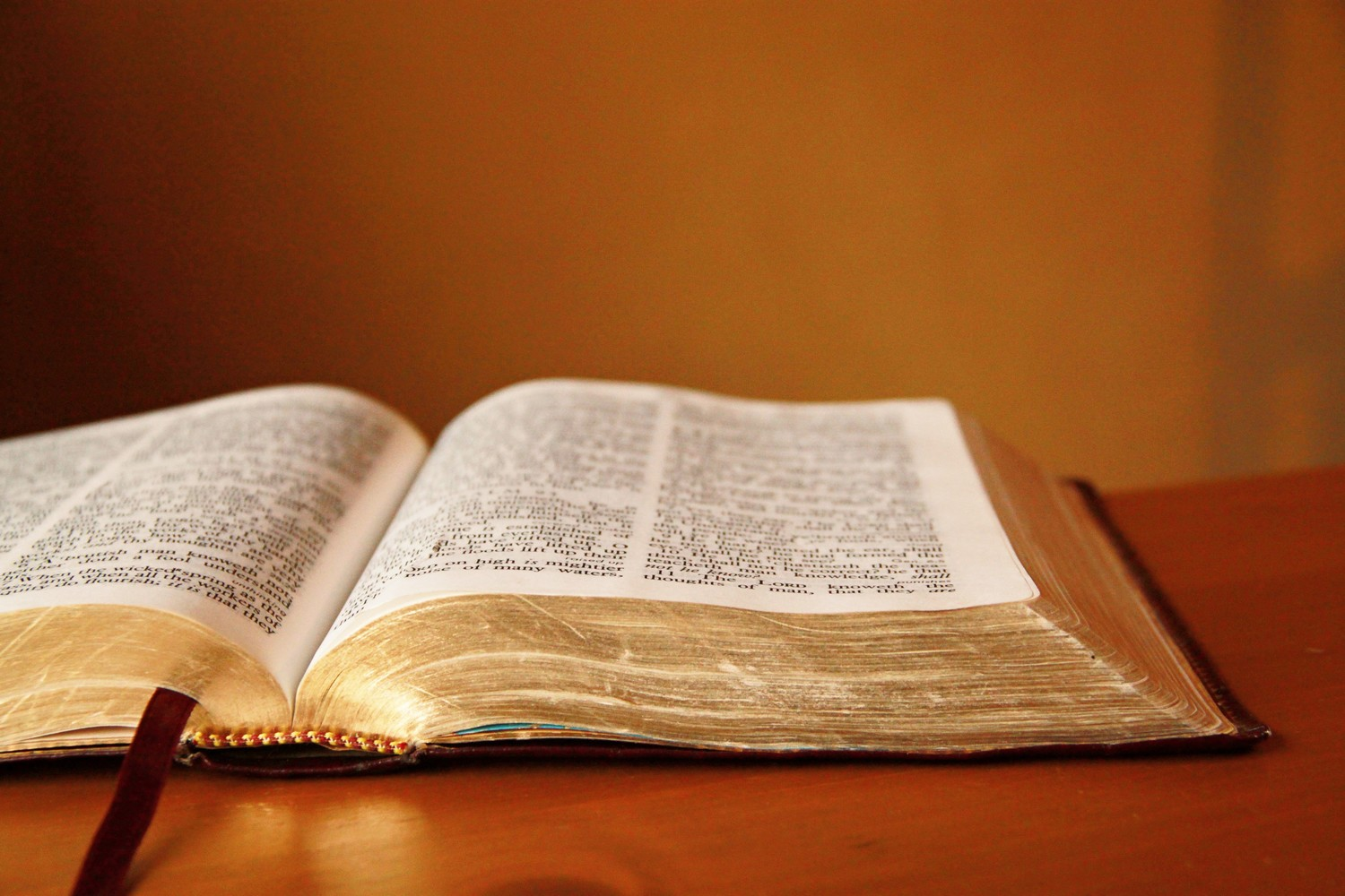 Bible Commentary on the End Times – Daniel and Revelation